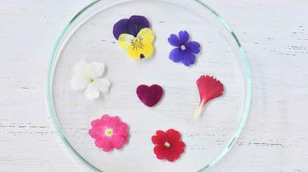 ヴィレヴァン通販サイトに「食べられる押し花」 -- ケーキやゼリーにワンポイント!